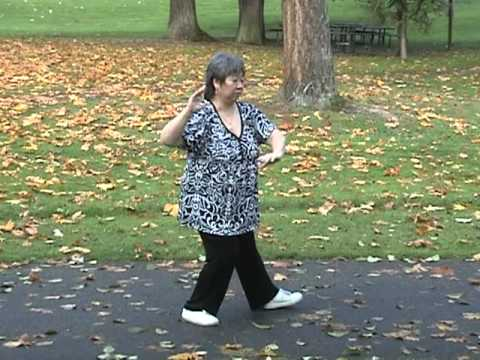 Yang Family tai chi long form first section
