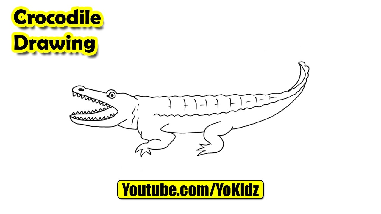 How to draw crocodile easy youtube for Easy to draw crocodile