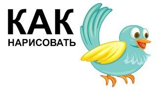 Птицы картинки. КАК НАРИСОВАТЬ ПТИЦУ(Как нарисовать птицу поэтапно карандашом для начинающих за короткий промежуток времени. http://youtu.be/M4IMJlajqQ4..., 2015-06-23T08:23:01.000Z)