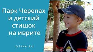 {Vlog #Иврика} ПАРК ЧЕРЕПАХ, стишок на иврите для детей и другие слова на иврите