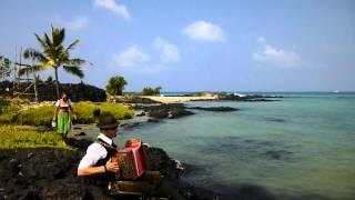 Es gibt kein Bier auf Hawaii - Steirische Harmonika