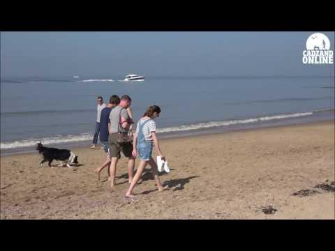 Strand Cadzand - Vakantie Cadzand of dagje aan zee