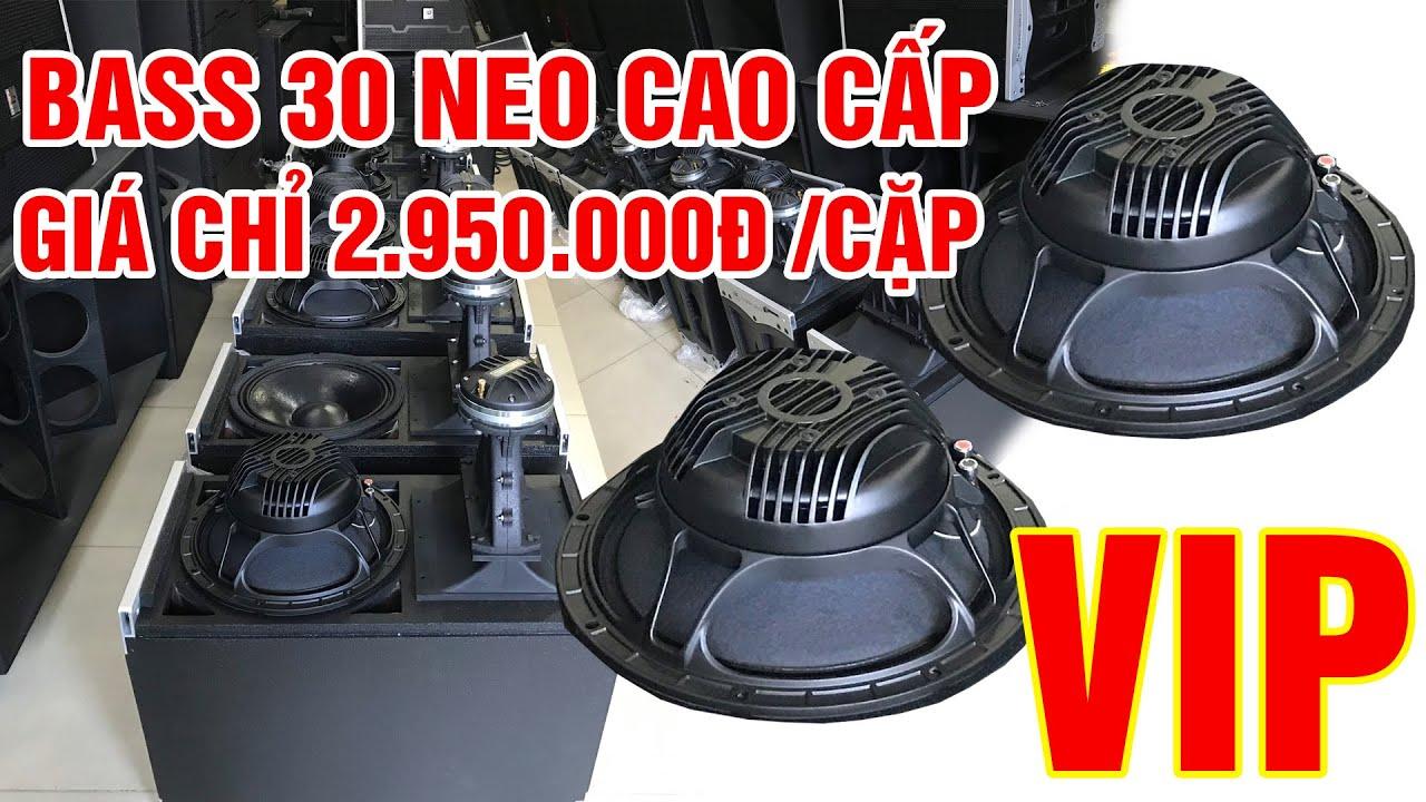 Loa bass rời 30 Neo siêu cao cấp [RuBy 12DN726] | Điện Máy Ruby