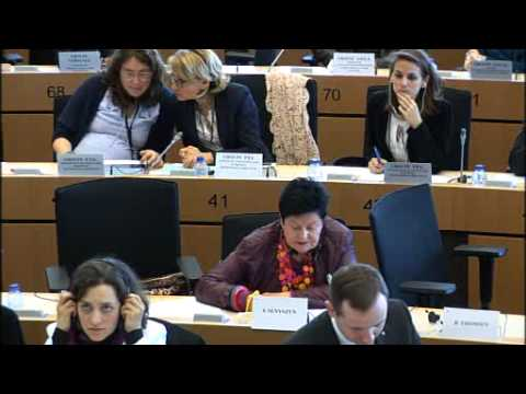 European Citizens' Initiative ONE OF US - Hearing at the European Parliament on 10 April 2014