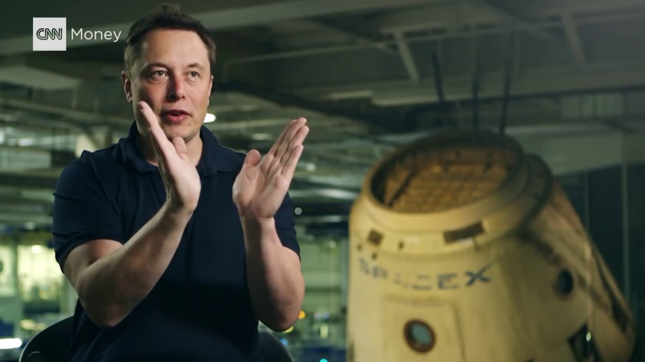 Elon musk population implosion