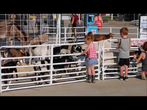 Missouri State Fair Fun for Kids