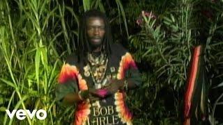 I Wayne - Life Seeds