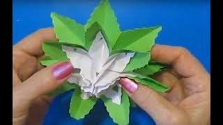 Как сделать объёмную звезду из бумаги | 3D звезда из бумаги | Новогодний декор своими руками