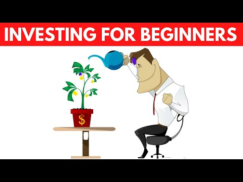 How a Beginner should Start Investing - Investing 101 - How To Invest