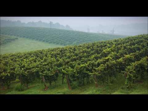 A Piedmont Celebration I  Fanfares by Aldo Rafael Forte