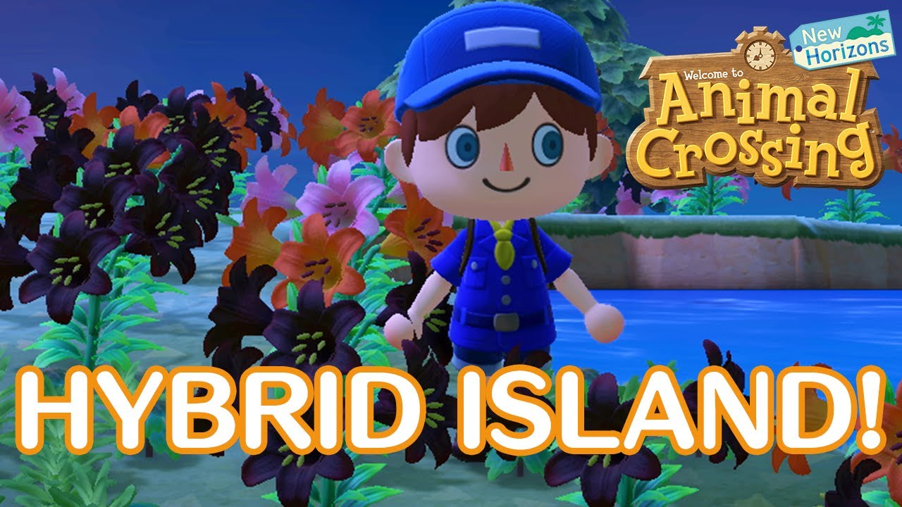 Video Visiting Beautiful Hybrid Island In Animal Crossing New