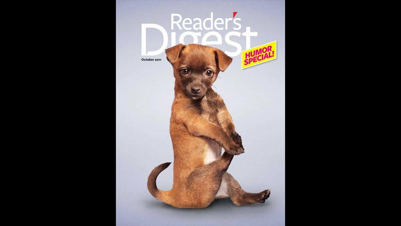 Cute Yoga Dogs Maxresdefault.jpg
