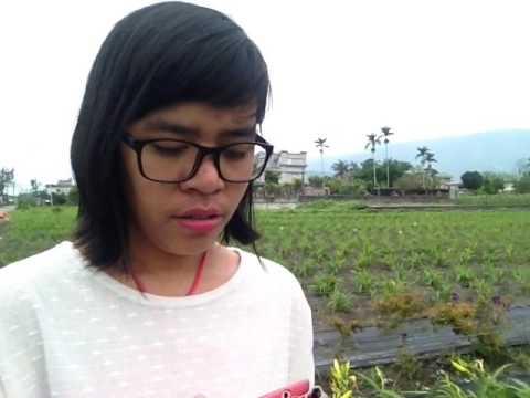 In The Garden Covered By Dameita Sumbayak Hualien