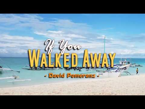 If You Walked Away - David Pomeranz (KARAOKE)
