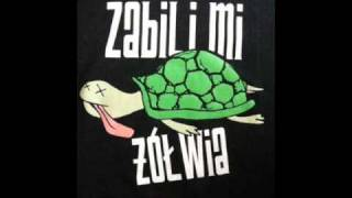 Zabili Mi Żółwia - Dlaczego
