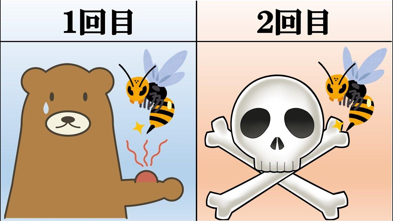 蜂 に 刺され たら どうなる