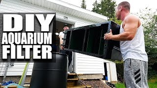 IT WORKS! DIY Aquarium filter complete and fish fed! | The King of DIY