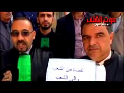 قاضي بمحكمة الشلف : إرادة الشعب تجبرنا  على الوقوف لجانبه