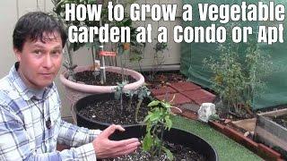 How to Grow a Vegetable Garden at a Condo or Apartment