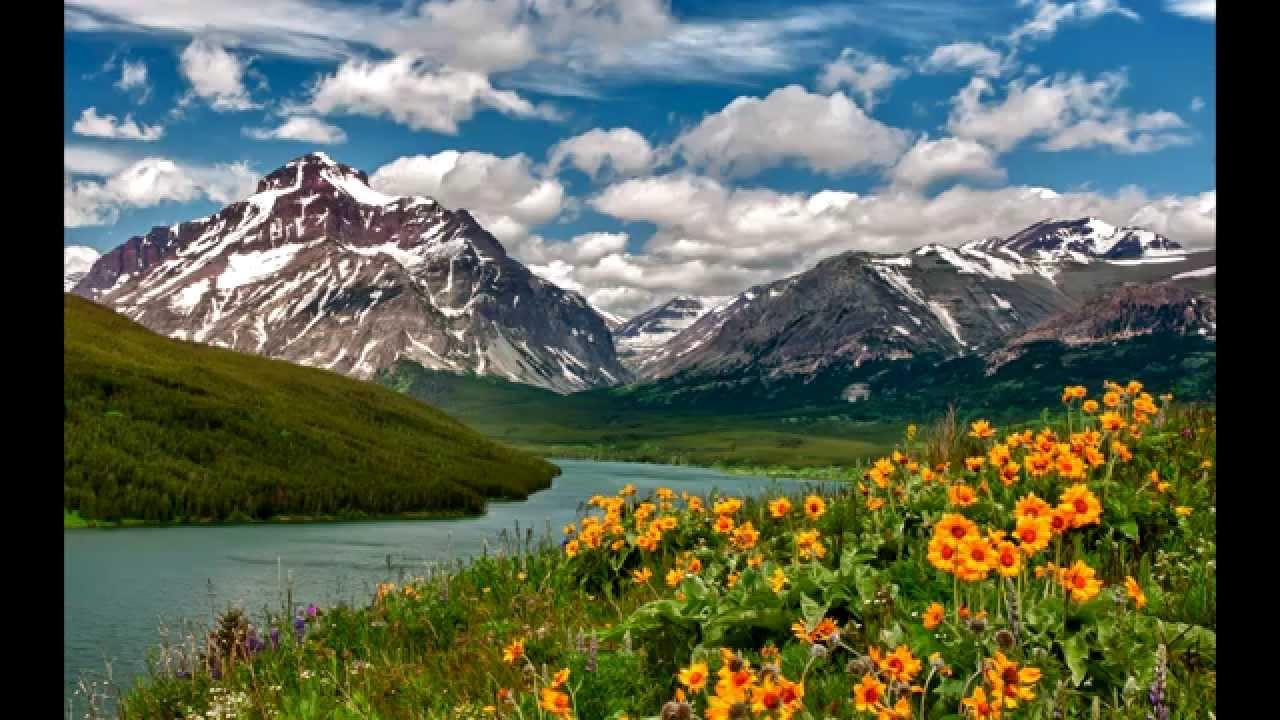 Bellissime immagini della natura del nostro pianeta youtube for Foto bellissime