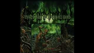 DEFORMATORY - The Forthcoming End - In The Wake of Pestilence (2013)