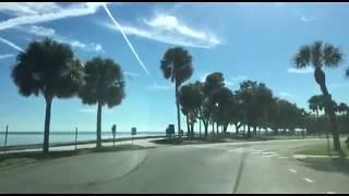 Во Флориде лютует зима