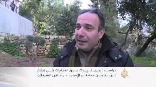 حرق النفايات في لبنان يزيد خطر الإصابة بالسرطان