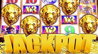 ★ MASSIVE JACKPOT! ★ MY BIGGEST HANDPAY BUFFALO GOLD | Slot Traveler