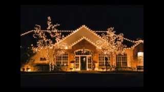 Outdoor Christmas Tree Decorations Ideas