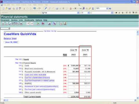 GAAP Financials: Working in the Financial Statements - Quarterly Reporting