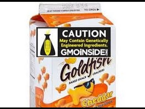 Voluntary GMO LABELING is being REJECTED in COLORADO USA. Would You EAT GMO Labelled FOOD