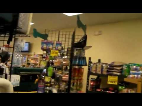 Whole Earth Pet Supply Tour of Our Store In Central Florida, Lady Lake and The Villages.rv