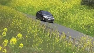 林 幸司さん制作 ビデオサロン2016年7月号「ビデオ道場」投稿作品.