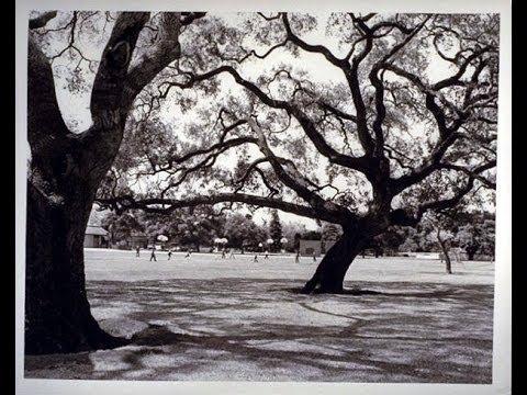 City Beat History Corner: Palo Alto Parks