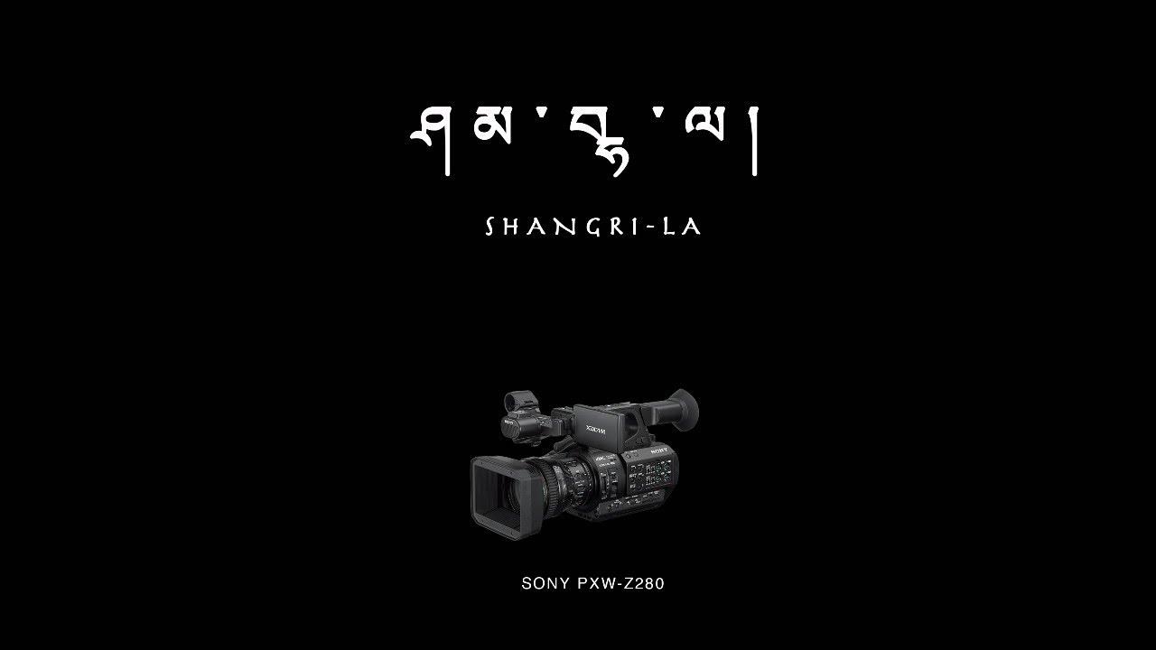 Sony Pxw Z280v Empfehlung