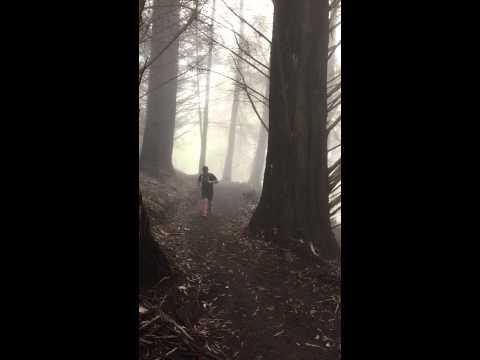Maui Forest Running