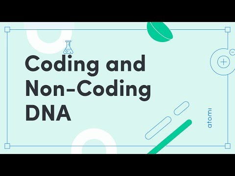 """Thumbnail for the embedded element """"WACE Biology: Coding and Non-Coding DNA"""""""