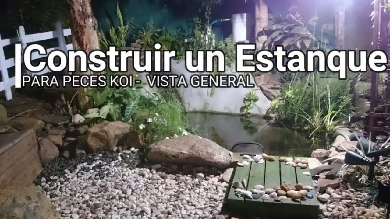Estanque casero de peces koi de victoria c mo construir for Peces para limpiar estanques