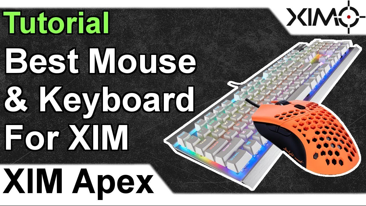 XIM APEX - Best Mouse And Keyboard For XIM Tutorial