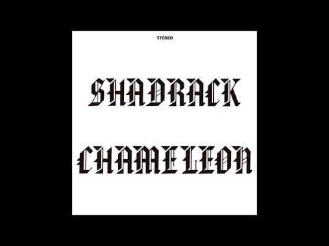 Shadrack Chameleon -