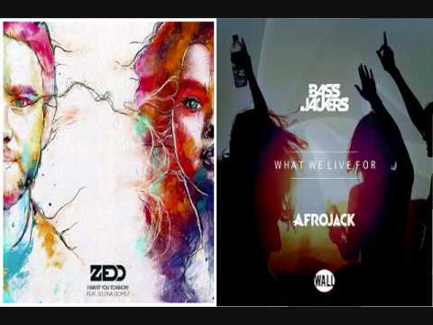 Afrojack & Bassjackers vs Zedd & Selena G - I Want You To Know What We Live For (Hardwell Mashup)