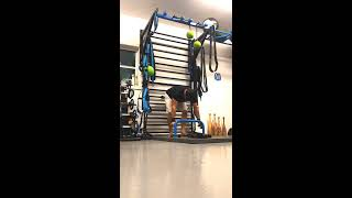 Functional Strength Circuit Workout With Bodyweight And SuperBands