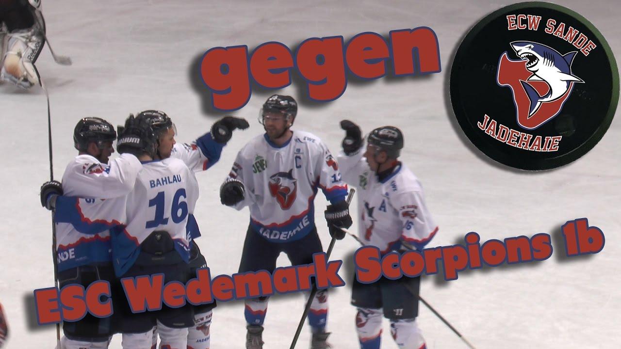 eishockey wedemark