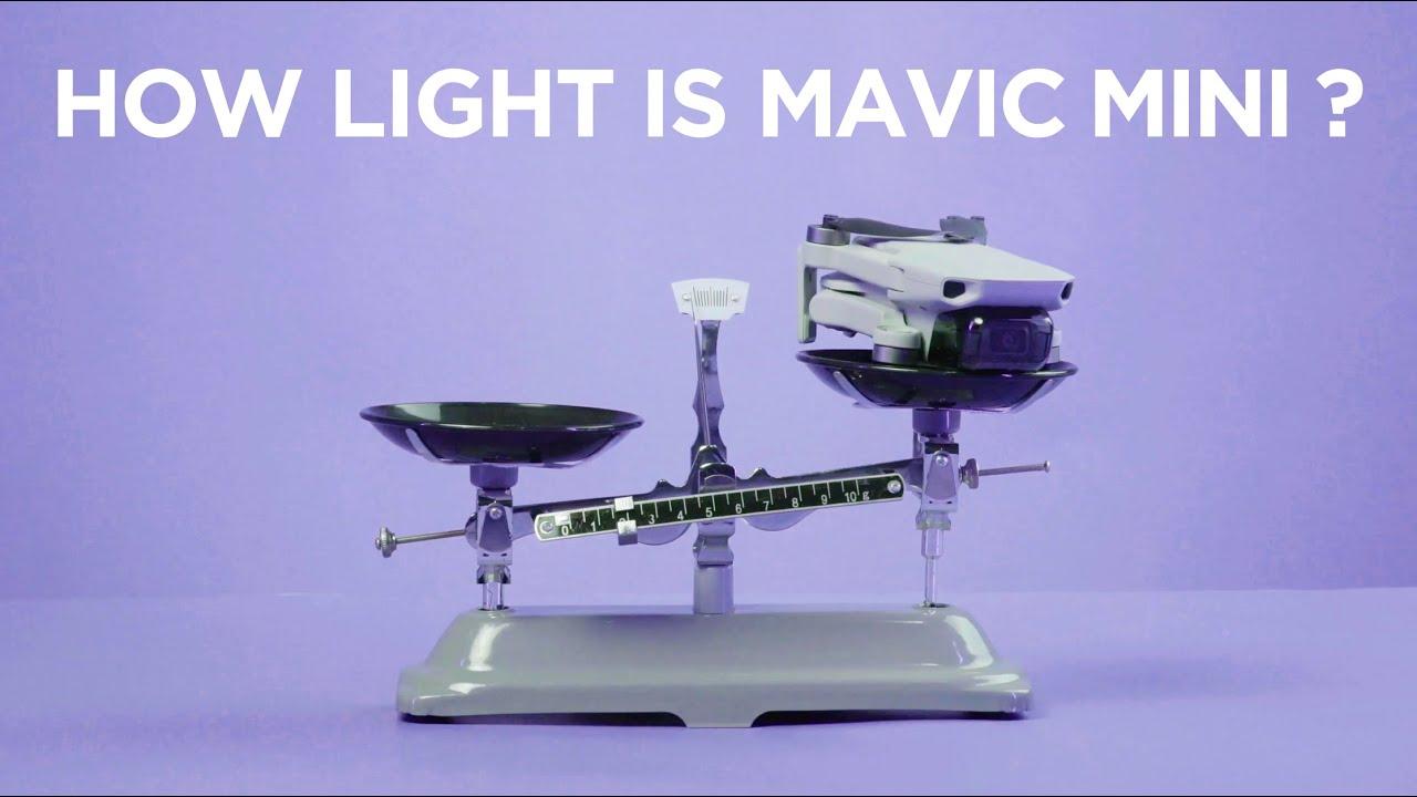 How Light is Mavic Mini?