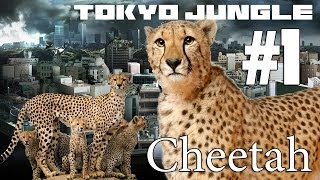 Tokyo Jungle: Cheetah Survive over 100 years  Part 1 of 4