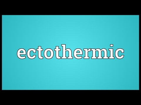 Ectothermic Meaning