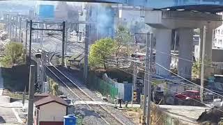 코레일 무궁화호 단체관광열차 극랑강역 통과