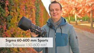 """Sigma 60-600 mm DG OS HSM Sport   Das """"bessere 150-600 mm"""" im Test [Deutsch]"""