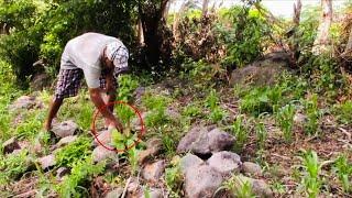 No Creeras Lo Que Encontraron En Un Cementerio De Indígenas