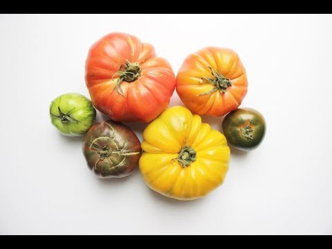 Nutritional Properties Behind Common Vegetables and How to Prepare Them
